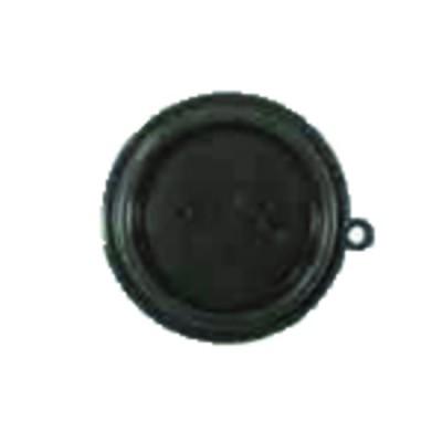Ensemble disconnecteur - DIFF pour Chappée : SX5625310