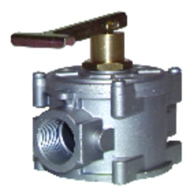 Termostato para calentador de agua BBSC 2 bulbos - COTHERM : BBSC301507