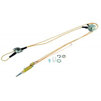 Contador divisoonal agua caliente 20/27 - ITRON : AQP15110WBR160ET