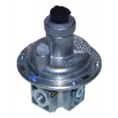 Selbstregelnde Umwälzpumpe hohe Leistung - Siriux25-65 - SALMSON : 2106379