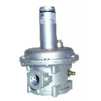 Selbstregelnde Umwälzpumpe hohe Leistung - Siriux40-80 - SALMSON : 2091531