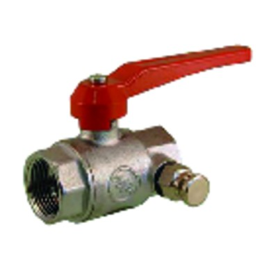 """Check valve with strainer basket ff1/2"""" - SFERACO : 311004"""