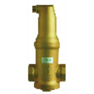 Acuastato de regulación con bulbo IMIT TR 2 0-60° - NESTOR MARTIN : 40814