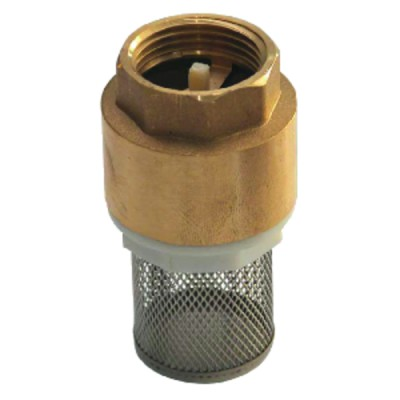 """Foot valve with inlet filter, all positions 1 1/2"""""""
