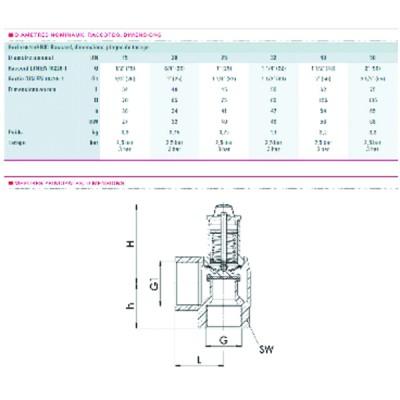 Termostato acqua limitatore a bulbo - Tipo TC300002 85 deg - JAEGER : TUA3C114