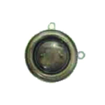 Druckmesser Wasser und Luft - Druckmesser 0/6 bar Durchmesser 100mm
