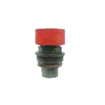 2 Elettrodi gas PCS80/C80 (X 2) - DIFF per Cuenod : 91217