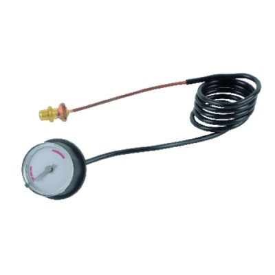Tête Thermostatique liquide RAE - DANFOSS : 013G5054