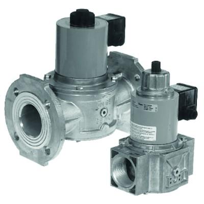 Filtre Vortex300 22mm - SENTINEL : ELIMV300-GRP22-FR