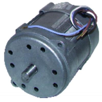 Motor 150W p/15M/20M - RIELLO : 3005820