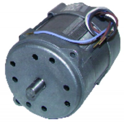 Motor 150w p/15m/20m type 518se - RIELLO : 3005820