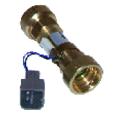 Haus- und Heimelektronik - Empfänger Rf6600FP elektrische Heizung per Funk - DELTA DORE : 6050561