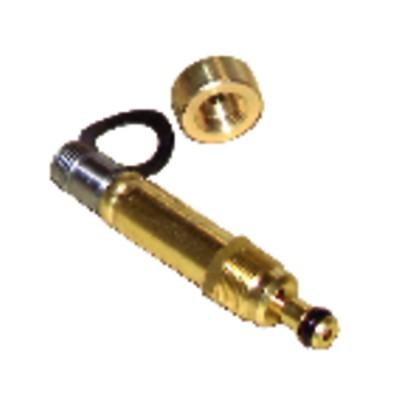 Core of solenoid valve bfp type n0 (71n3010)  - DANFOSS : 071N3010