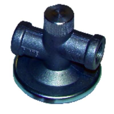 Cartridge of filter siku
