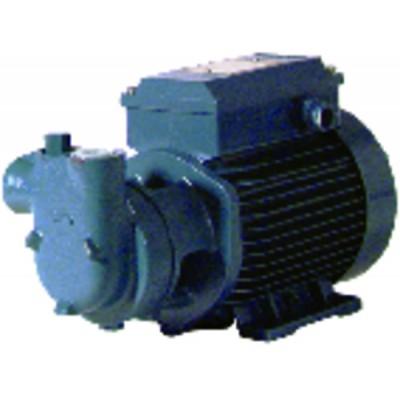 Motorpump low pressure cam 60 single-phased 750l/h