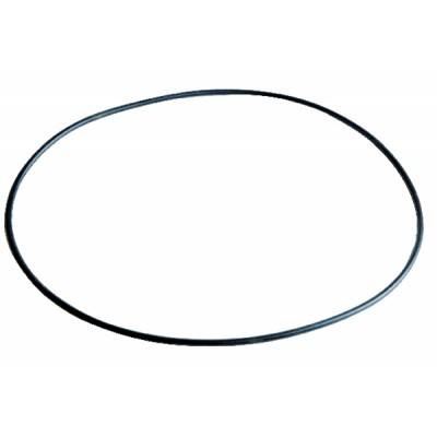 Gasket d-o-ring-sogo-r2170--c 362700702 - EBARA : 362700702