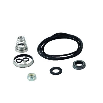 Kit garniture méca. CD CAR/CER/EPDM - EBARA : 364500034