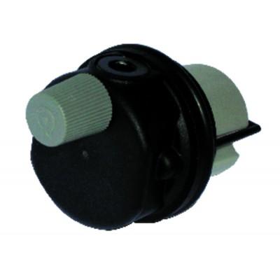 Auto air vent In plastic - FERROLI : 39818220
