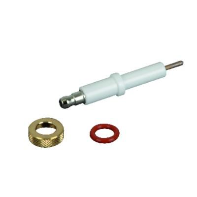 Ionisation electrode kit nl - FERROLI : 39820220