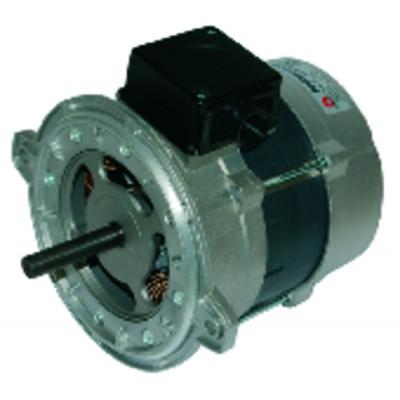 Burner motor type 135.2.370.54m - RIELLO : 3006612