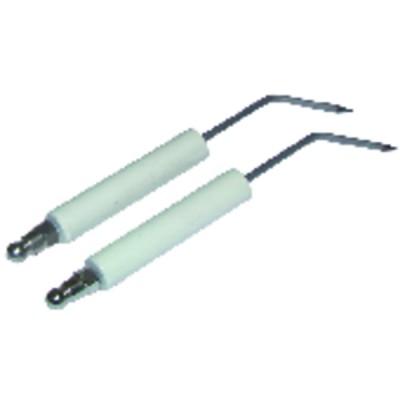 Specific electrode a6g  (X 2) - ZAEGEL HELD : Z229200899