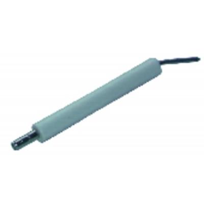 Elettrodo specifico ABF 10 (X 2) - BENTONE AHR : 11593701