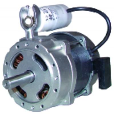 Burner motor type 60 .2.50m - GAZ INDUSTRIE : 1027011