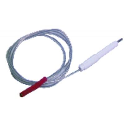 Électrode allumage + câble - AOSMITH : 0301088