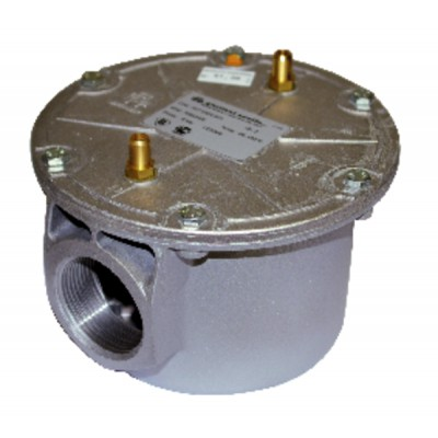 "Gas filter type g4 with pressure plug 1""1/2 - WATTS INDUSTRIES : 0070064000"