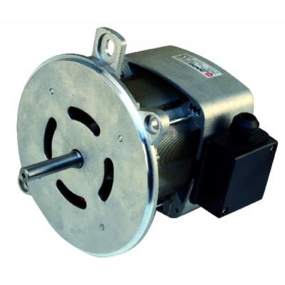 Nema ventilated single-phased 2 flange standard motor