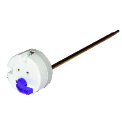 Thermostat à canne TSE 270 à levier - COTHERM : TSE00176
