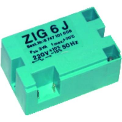 Transformador de encendido ZIG 6J - ANSTOSS : 07000042