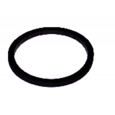 Gasket for water heater