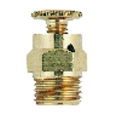 "Handwheel drainer M1/8""  (X 10)"