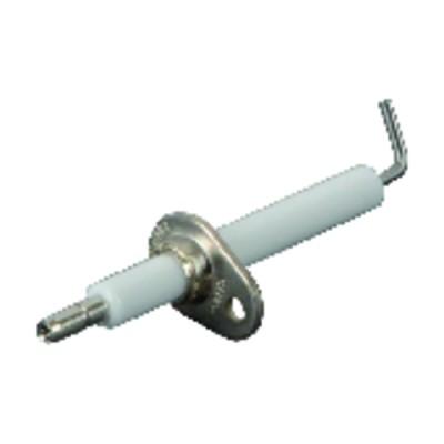 Électrode d'allumage - CHAPPEE : V134257