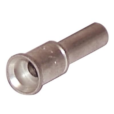 Injecteur veilleuse Gn - AOSMITH : 0301089