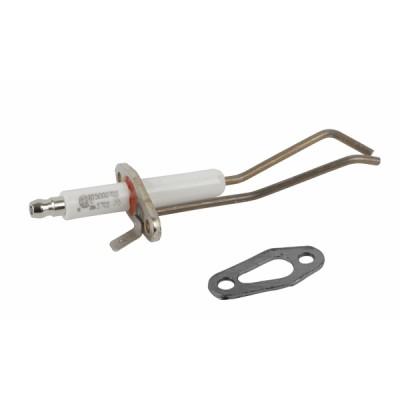 Électrode allumage & joint R30 35 sup 65kW - RENDAMAX : 64200777