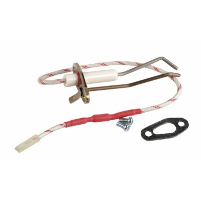 Electrodos de encendido + junta - RENDAMAX : 64202261