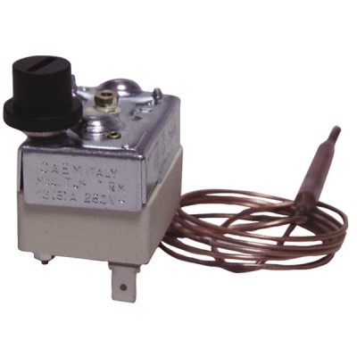 Sicherheitsthermostat mit Fühler CAEM Typ TS RM TF  - DIFF