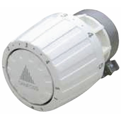Thermostatkopf für alten Körper ra/v  - DANFOSS: 013G2960