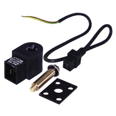 Electroválvula completa AS 220V - SUNTEC : 991435