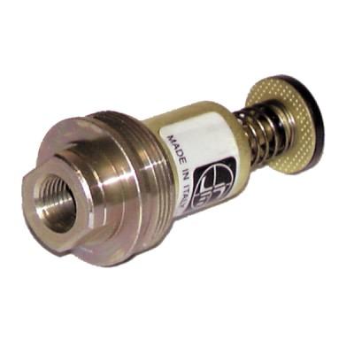 Testa magnetica SIT 0.006.443 - SIT : 0 006 443