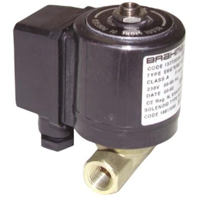 "Électrovanne gaz FF1/2"" BRAHMA basse pression 230Vac NF - BRAHMA : 13742002"