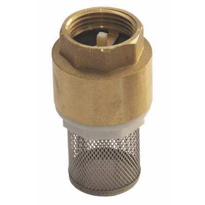 """Foot valve with inlet filter, all positions 1 1/4"""""""